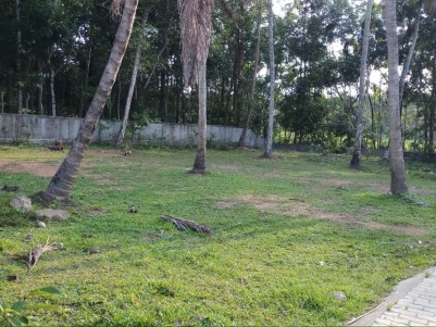 RESIDENTIAL PLOT FOR SALE AT ANGAMALY