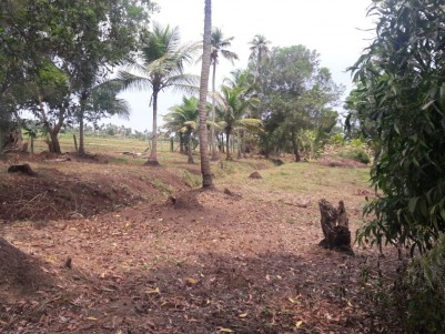 4 Acres land for sale at Vaikom,Kottayam suitable for Sand Mining