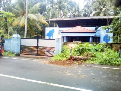 3BHK,2000SqFt Old House in 18 Cents for sale in Manikunnam,Kottayam