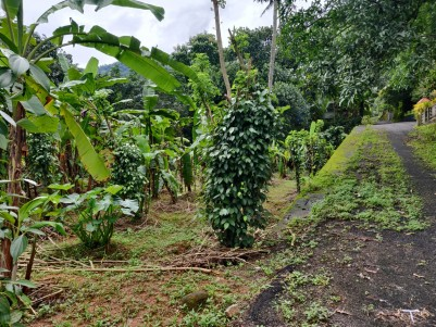 Residential land for sale in Moolamattom,Idukki