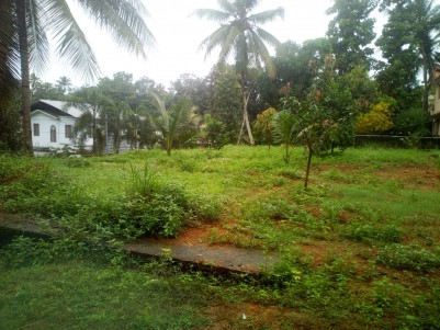 Land for sale near Thellakam,Kottayam