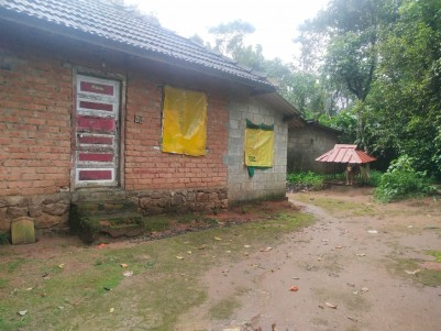 5 Acre land with two House for sale at Panikkankudy, Idukki