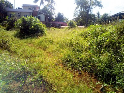 25 Cent Square Residential land for sale at Seminarippady, Changanachery