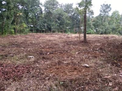 1.42 Acres of Land for Sale at Krariyeli, Perumbavoor, Ernakulam