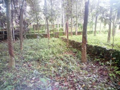 16 Acre Rubber plantation for sale near Ponkunnam, Kottayam