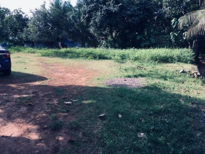 Plots for sale - 11 Cents near Aluva-Angamaly Route,Ernakulam