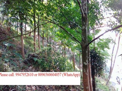 3 Acres and 37 cents fully cultivated agriculture land and 4 Bedrooms House for sale/Exchange