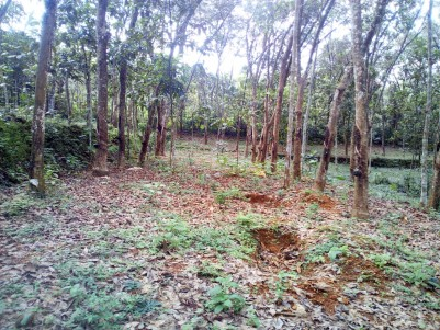60 Cent Residential Land for sale near 8-th mile, Pampady, Kottayam