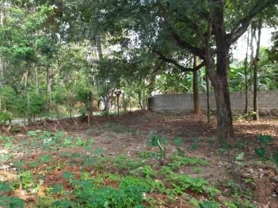 17 Cent Residential Land for sale in Vavarambalam, near Technocity, Trivandrum