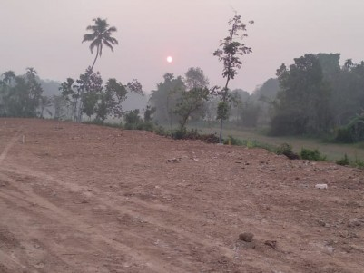 Plots 10 to 15 Cents for Sale with all facilities at Punnaveli, Mallappally, Pathanamthitta