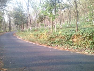 10 Acre Residential land for sale near Ullanadu, Pala, Kottayam