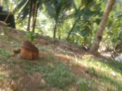 10 Cent land for sale near Chittar Market, Pathanamthitta