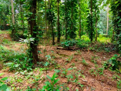 23 Cents Residential land for sale at Kozhencherry, Pathanamthitta