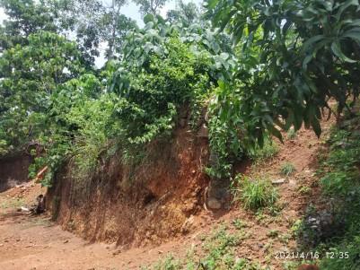 13.5 Cents Residential plot for sale Near St Jude global school, Manarcadu, Kottayam