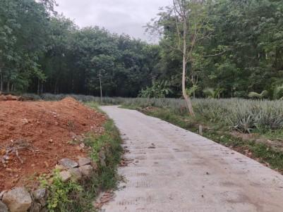 7 to 20 Cents House Plots for sale near Tabor Prayer house Kodumpidi, Kottayam