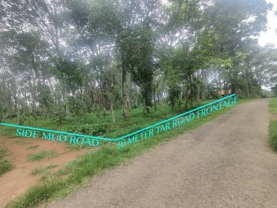 2.6 Acres multi-crop land for sale near Kenichira & Meenangadi, Wayanad