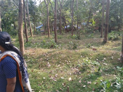 4.5 Cents of Residential land for sale Near Kannur International Airport