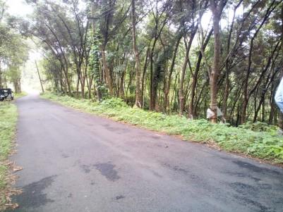 7 Acre Residential land for sale near Pala_Thodupuzha Highway, Manathoor, Kottayam