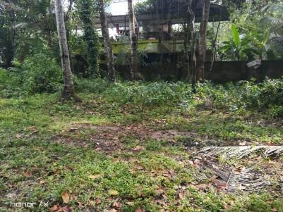 25 Cents of Original land for sale at Eramalloor, Ernakulam