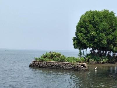 Waterfront 1.24 Acres for sale Near Vembanad Lake in Udayamperoor, Ernakulam