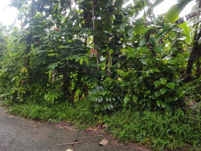 7.5 Cents land with wide road Mavelipuram, Kakkanad, Kochi