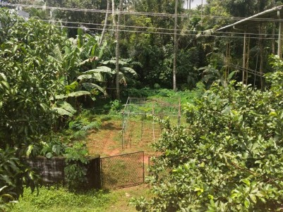Residential Plot for sale on Aloor Bypass Road, Kodakara, Thrissur